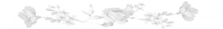 Website post blank roses